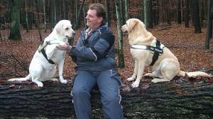 Hundetraining im Wald