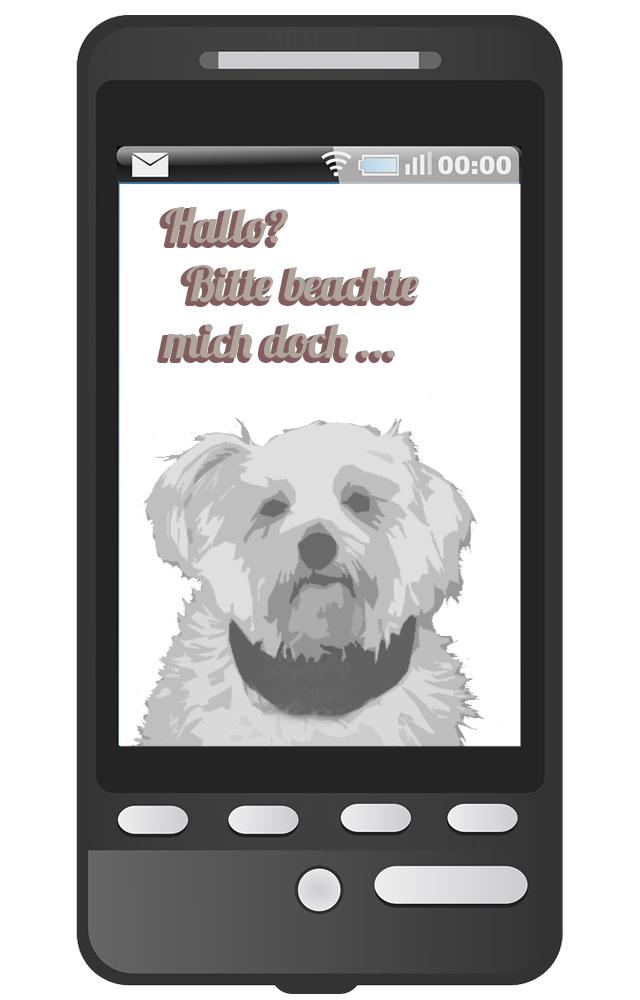 Hund und Handy - nicht beim Hundespaziergang!