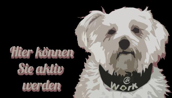 Besuchhunde-Organistationen